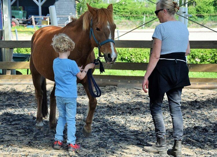 Paardrijles voor beginners op mini-manege Hippago in Elim, Drenthe