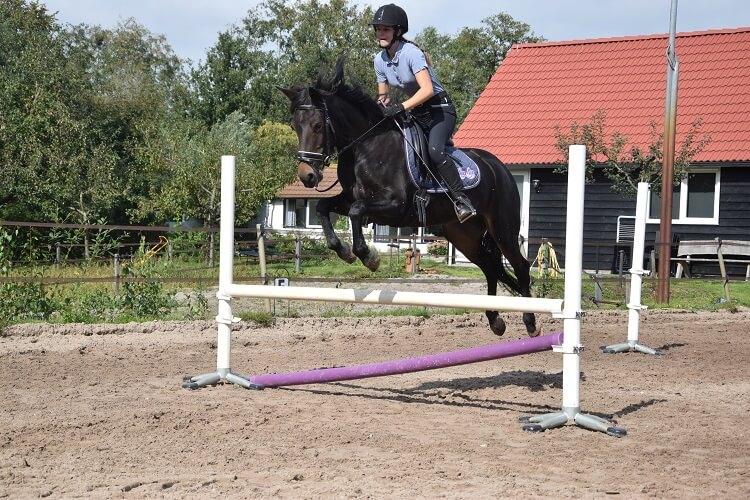 Jumping Ko-I-Noor