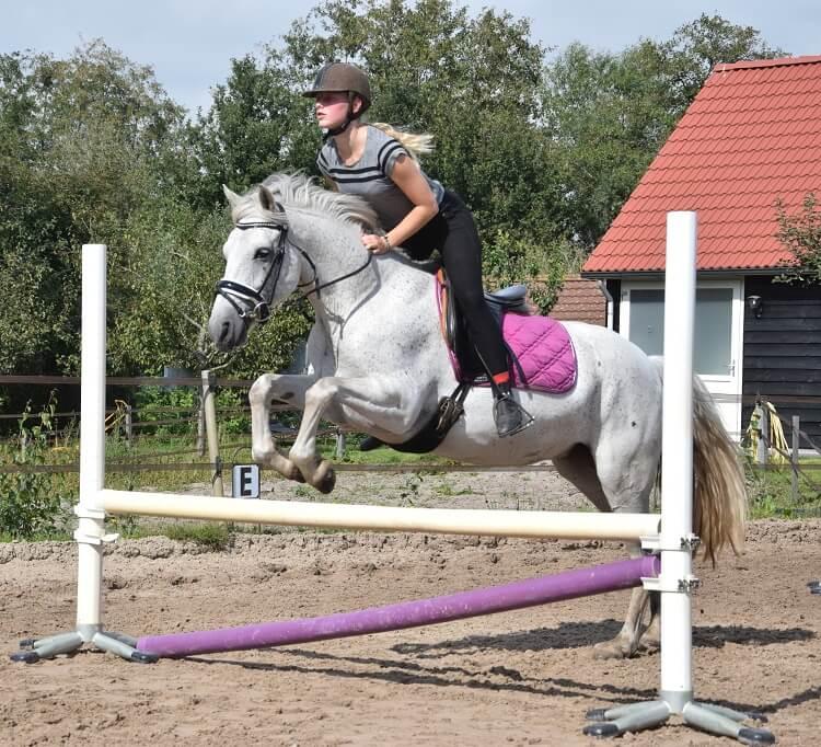 Jumping Rosé