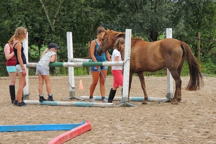 Weekendje paardrijden en eens iets anders met paarden doen