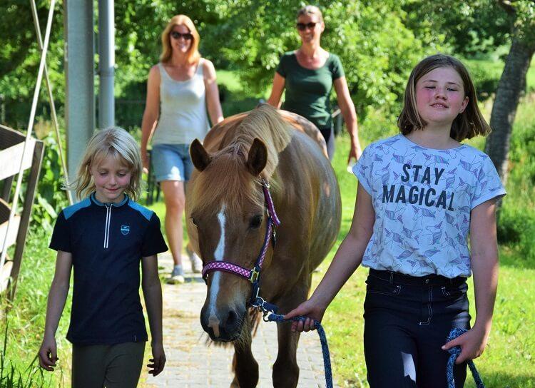 Paardrijdag: samen met vriendinnen op mini-manege Hippago in Elim, Drenthe