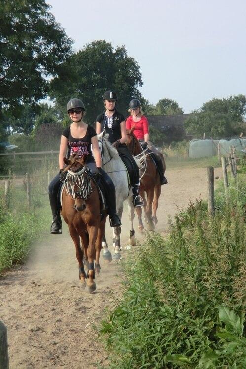 Paardrijdag: buitenrit tussen de weilanden